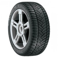 195/55 R16 Dunlop SP Winter Sport M3